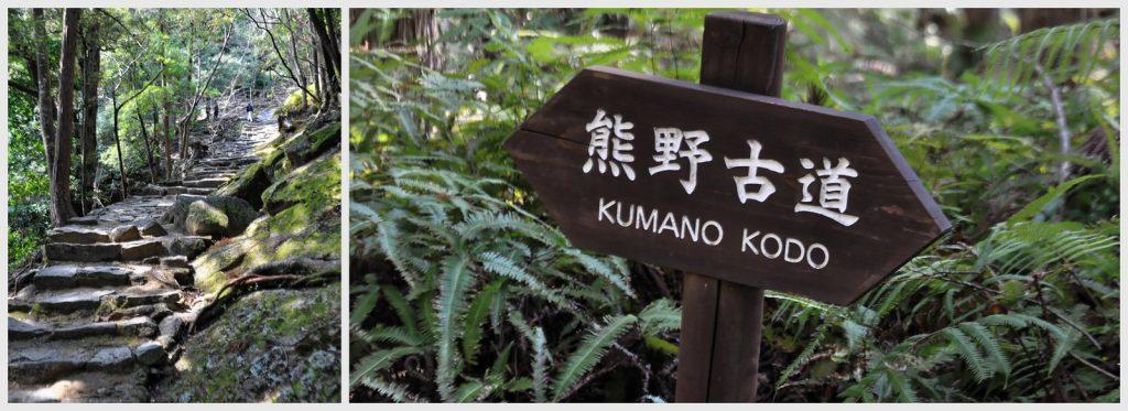1600884948 348 que ver en la prefectura de Wakayama