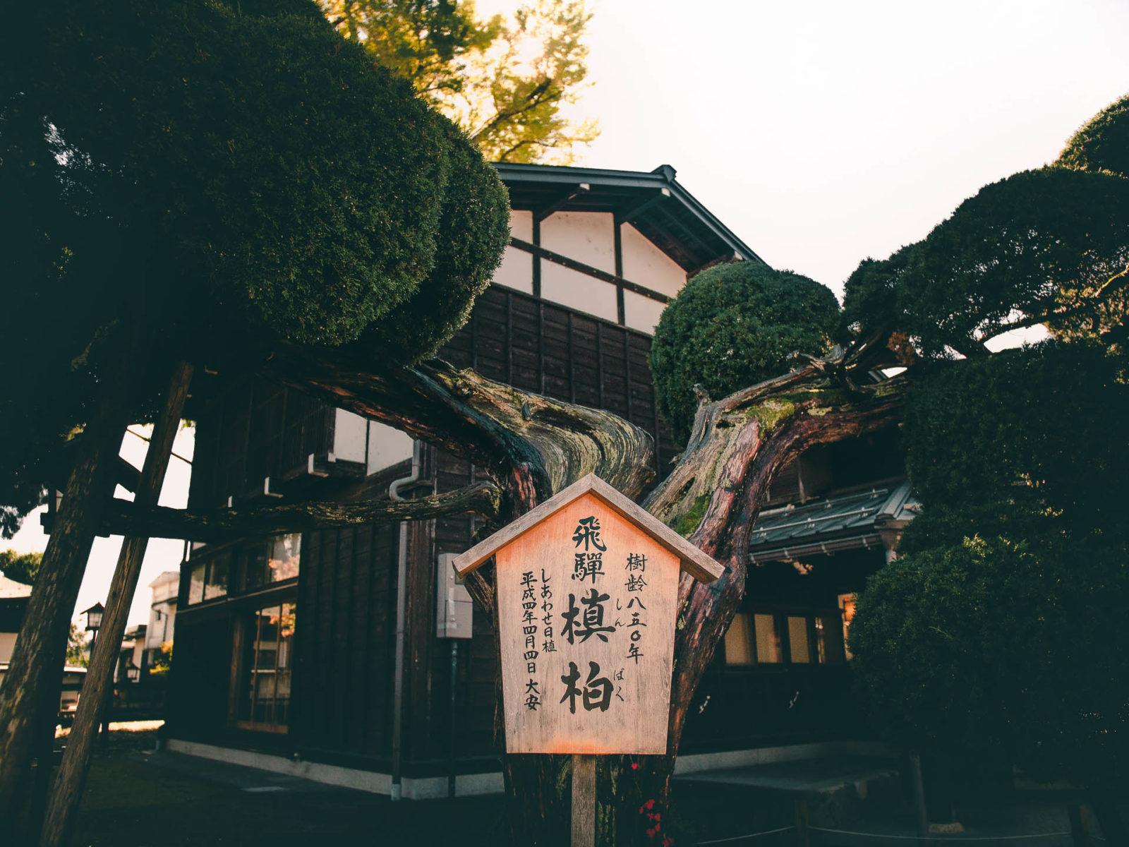 1600942431 878 Hida Furukawa camina en Japon inspiracion de Your Name