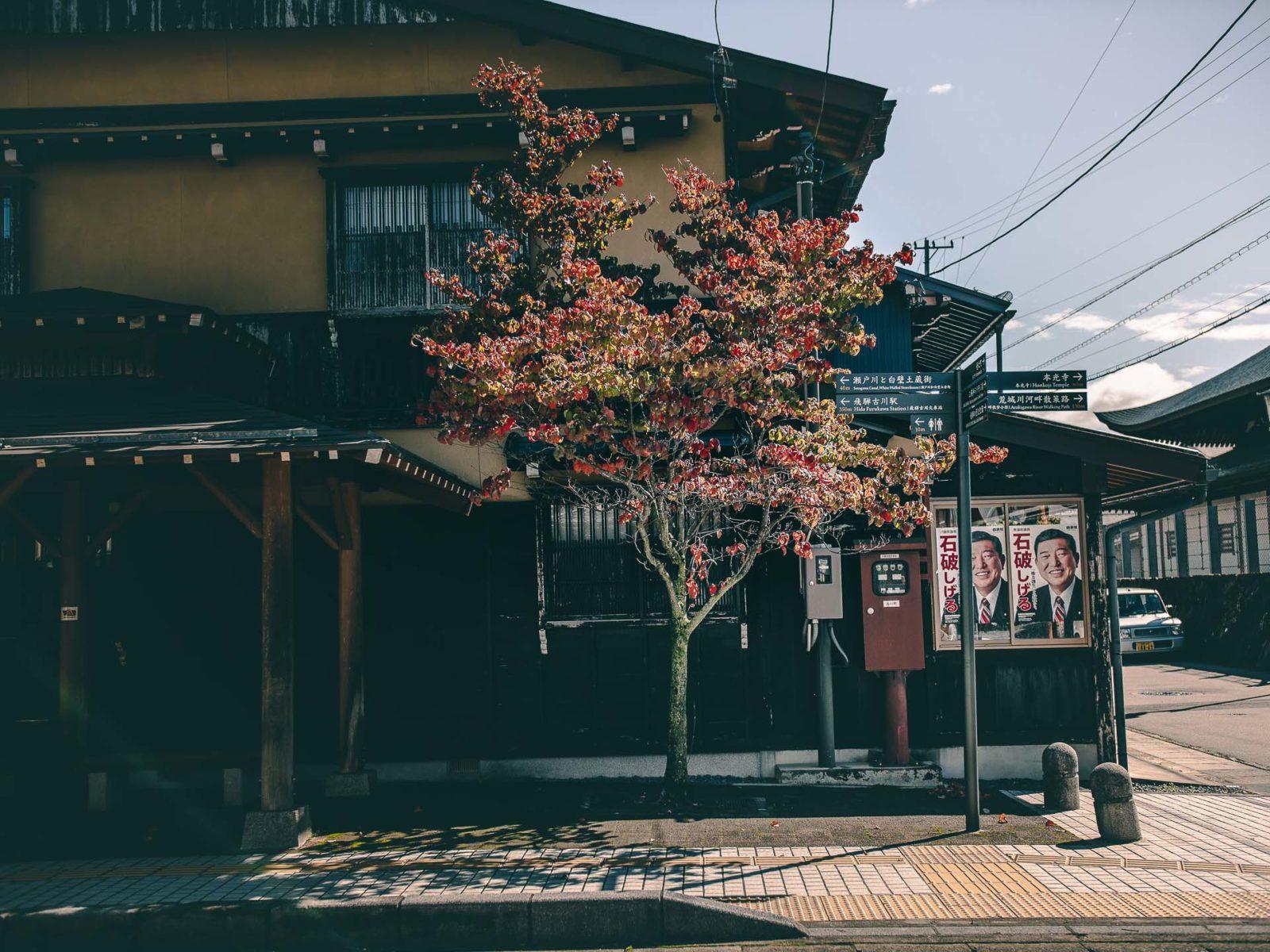 1600942432 61 Hida Furukawa camina en Japon inspiracion de Your Name