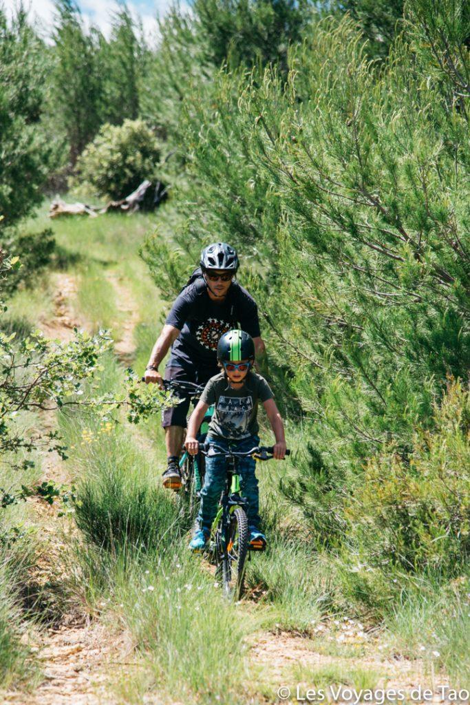 Bicicleta de montaña familiar Verdon