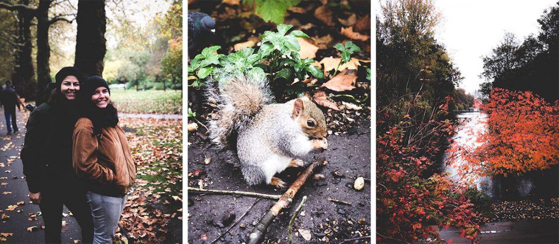 Saint jame park que visitar en Londres