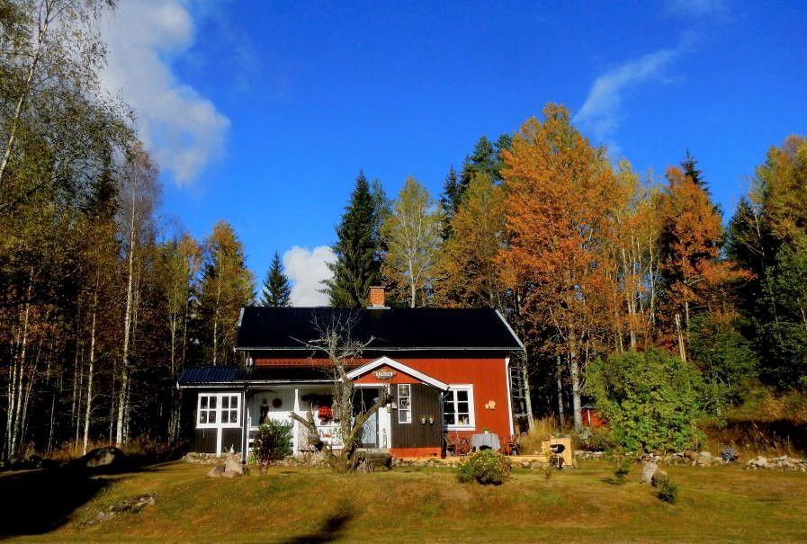 1601132528 565 Alquilar una casa aislada ¿donde ir verde