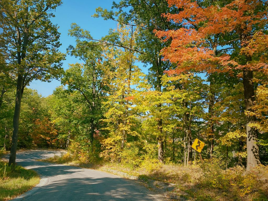 1601353035 509 Paseo pintoresco en Finger Lakes NY