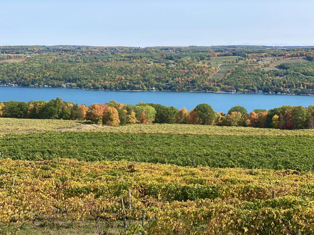 Paseo pintoresco en Finger Lakes NY
