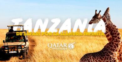 las 10 mejores experiencias de safari en uganda 1
