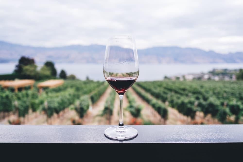 Cata de vinos de Paros