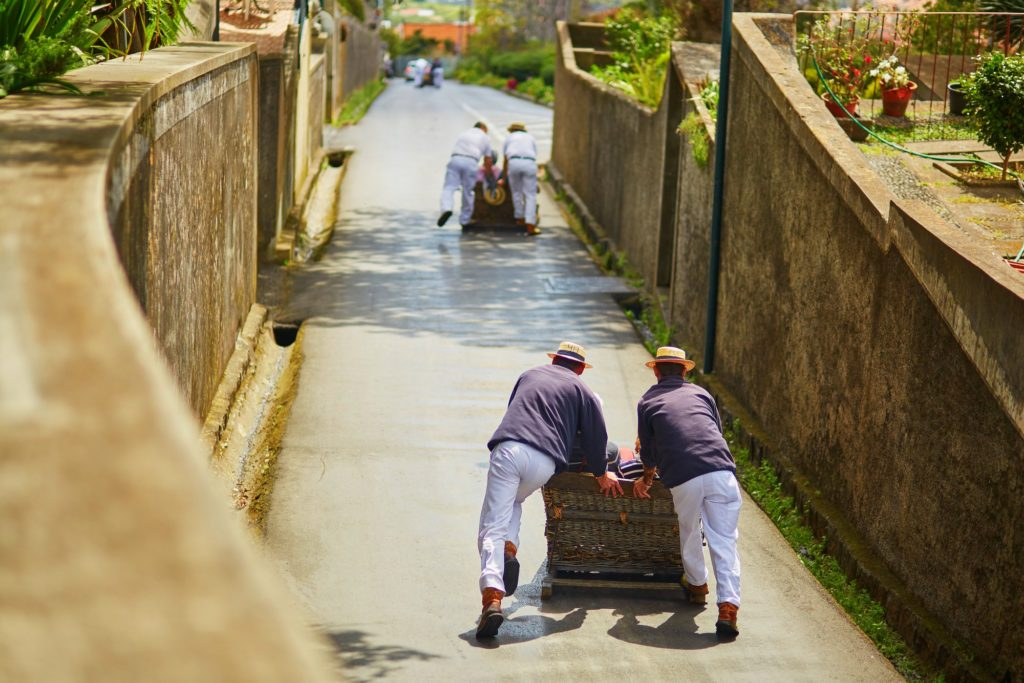 Trineo Funchal