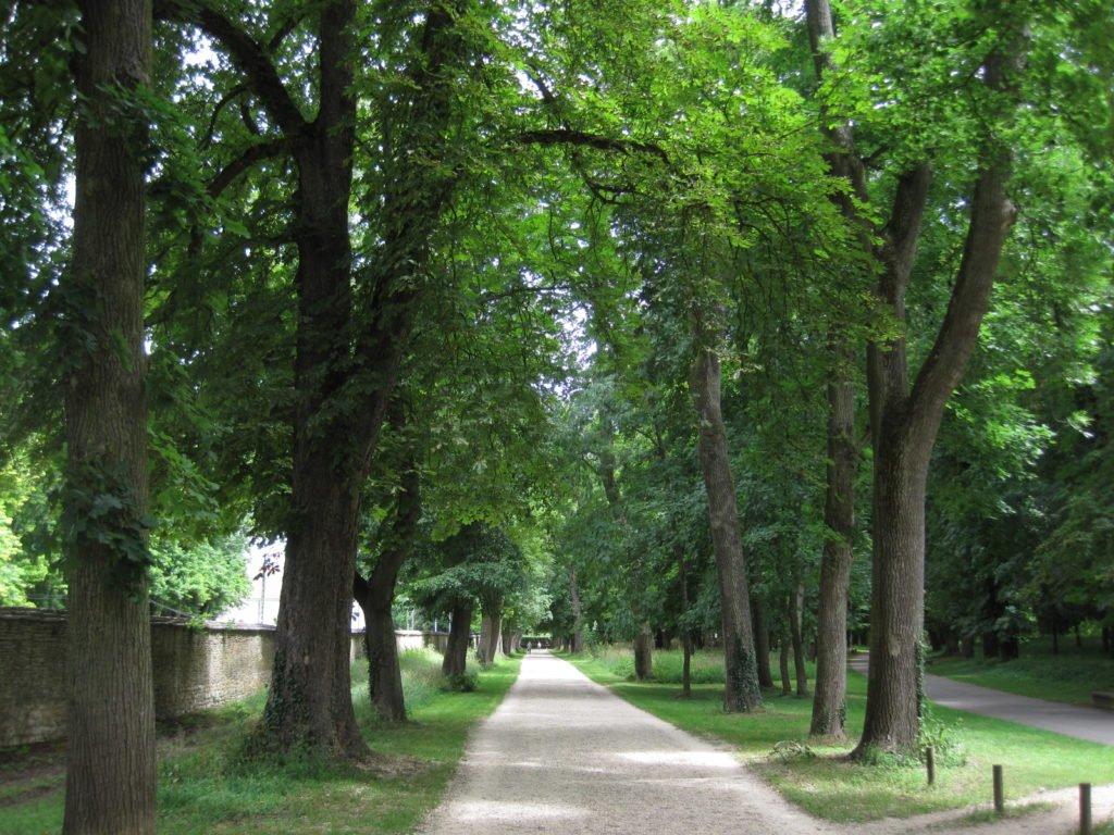 Parque Colombière Dijon
