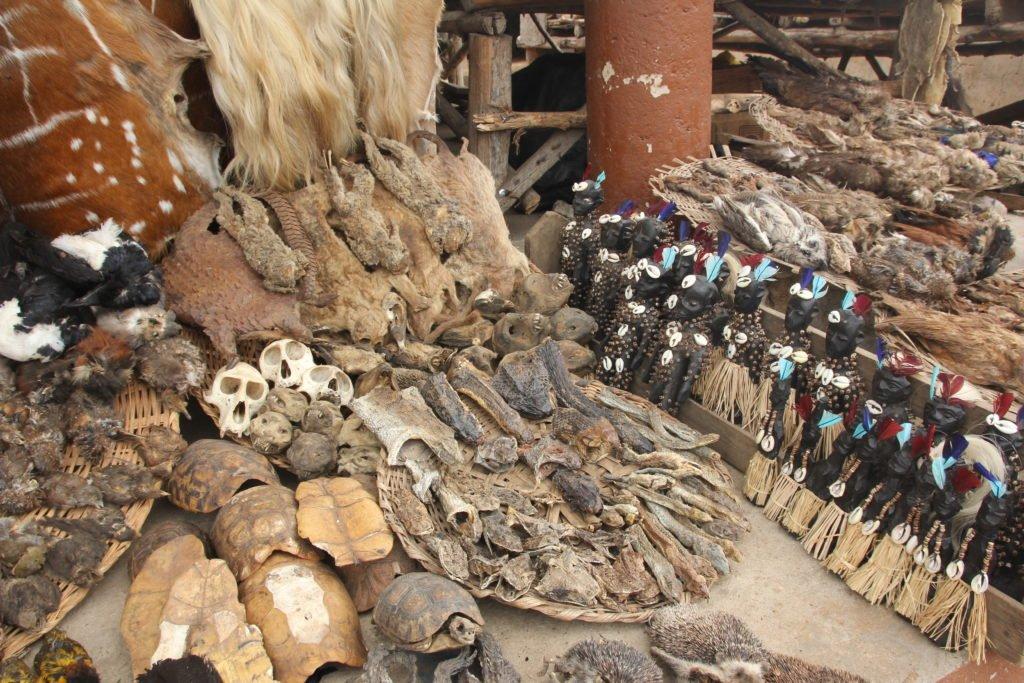 Mercado vudú de Togo
