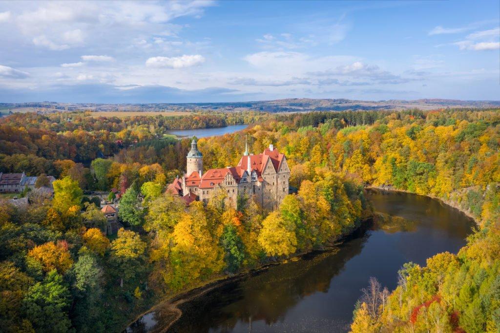 bosque en polonia