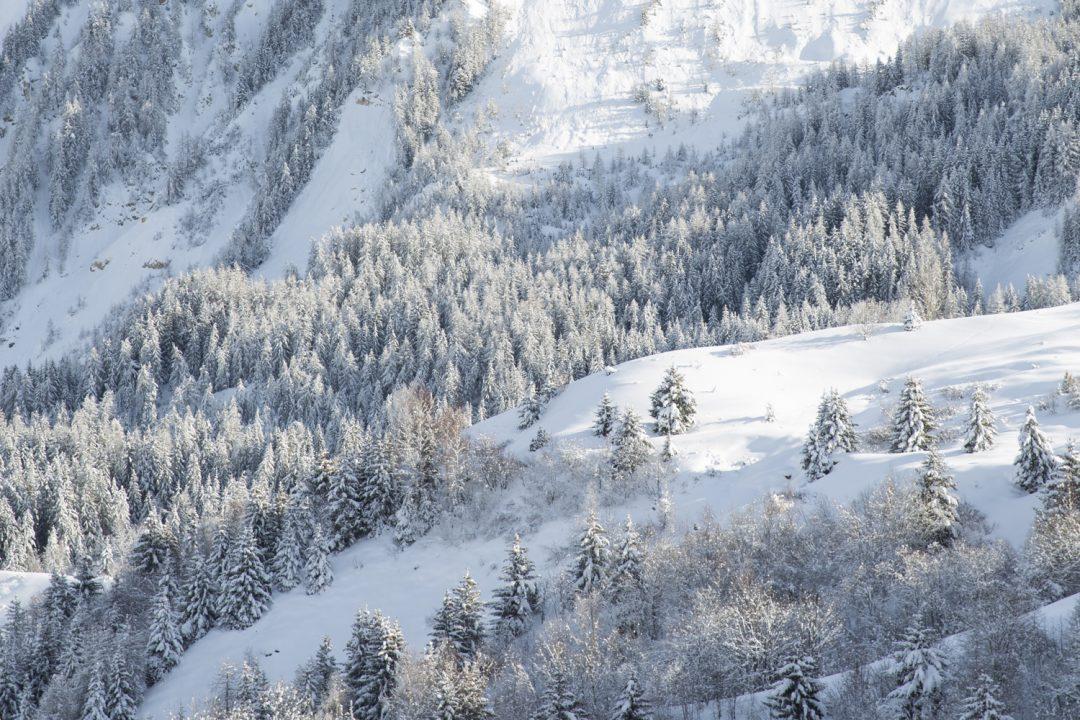 1611680520 228 Imagenes de un invierno en la montana sin remontes