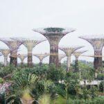 visiter singapour pour la premiere fois en 10 visites attractions et conseils