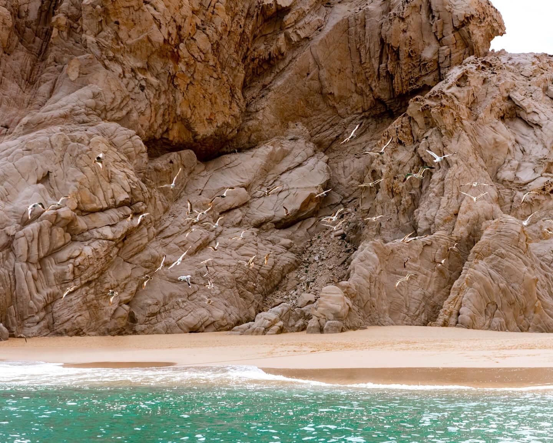 1613940519 303 Las mejores cosas para hacer en Cabo San Lucas