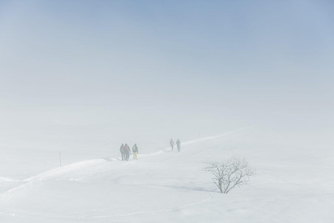 1614090889 110 4 paseos sin raquetas de nieve en La Toussuire y