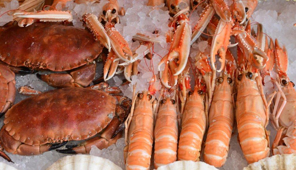 Crustáceos de Calais