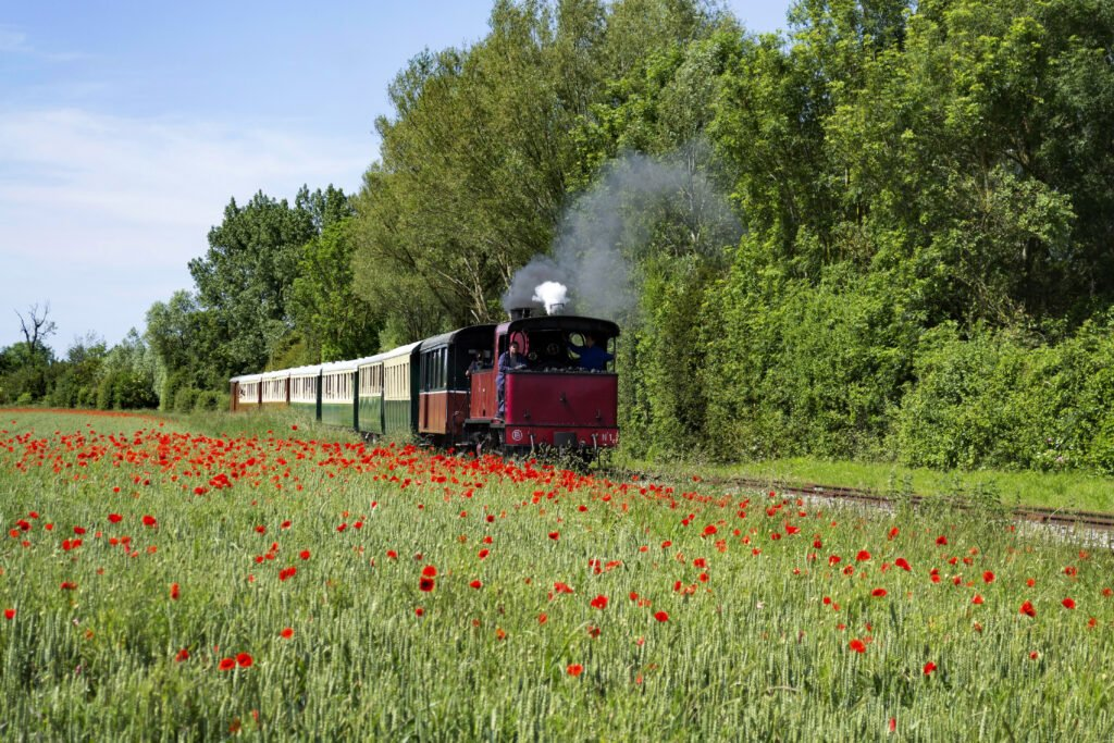 Tren turístico de la Bahía de Somme
