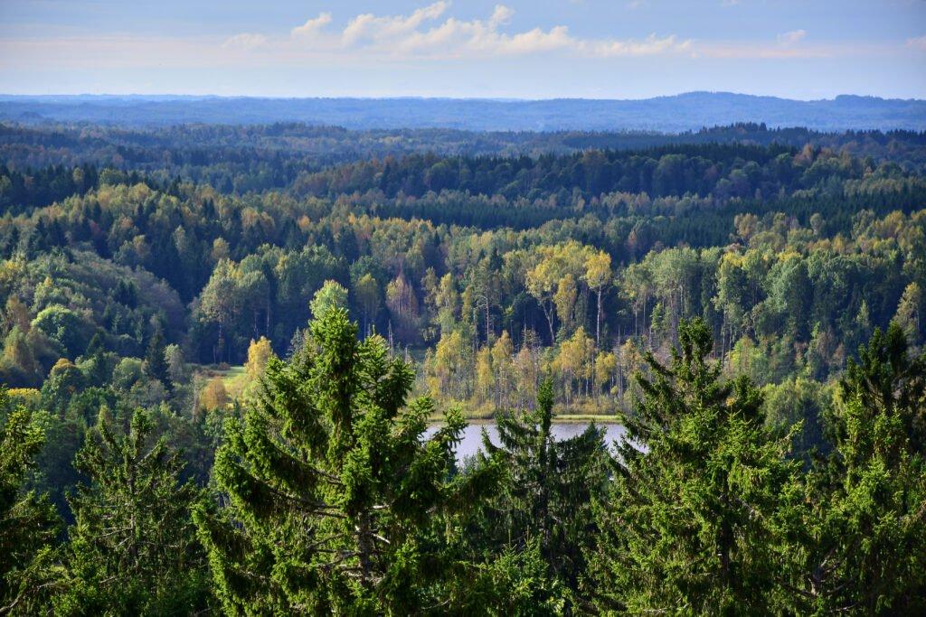 Paisajes de Suur Munamägi de Estonia