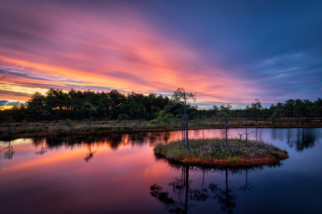 Paisajes del Parque Nacional Soomaa de Estonia