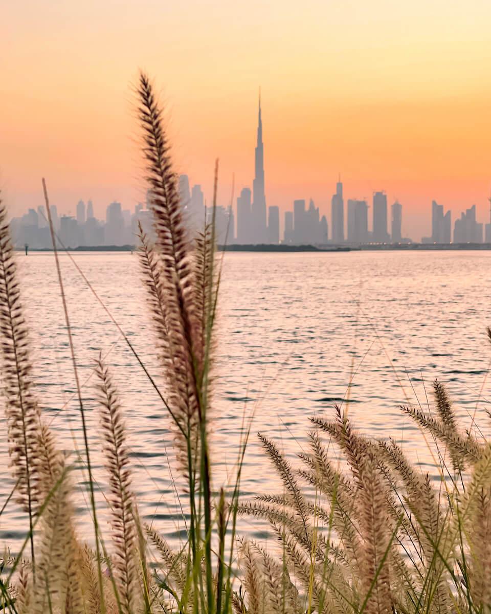 1617553734 129 Las mejores cosas para hacer en Dubai y Abu Dhabi