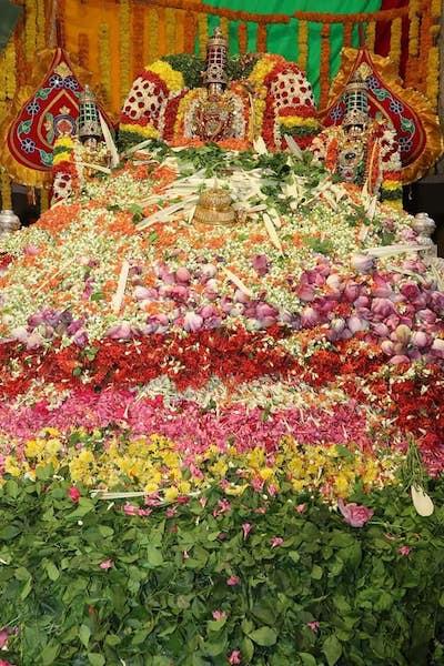 Flores - Los secretos del templo de Tirumala