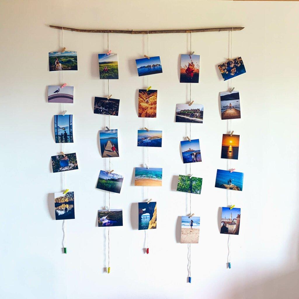 Collage de fotos con bosques a la deriva
