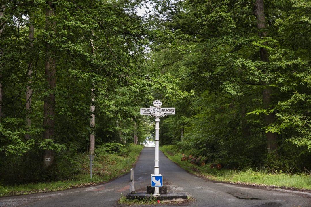 1624268442 776 Ideas para excursiones por la naturaleza en Sarthe