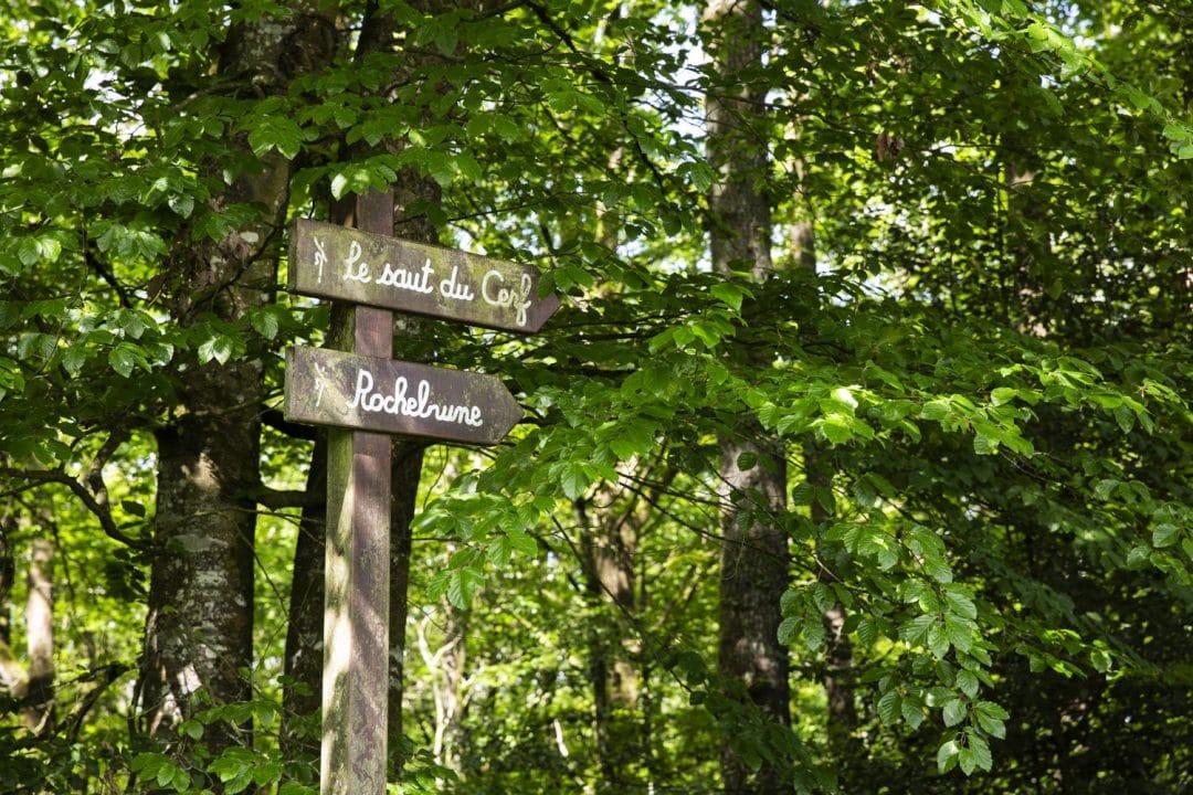 1624268443 829 Ideas para excursiones por la naturaleza en Sarthe