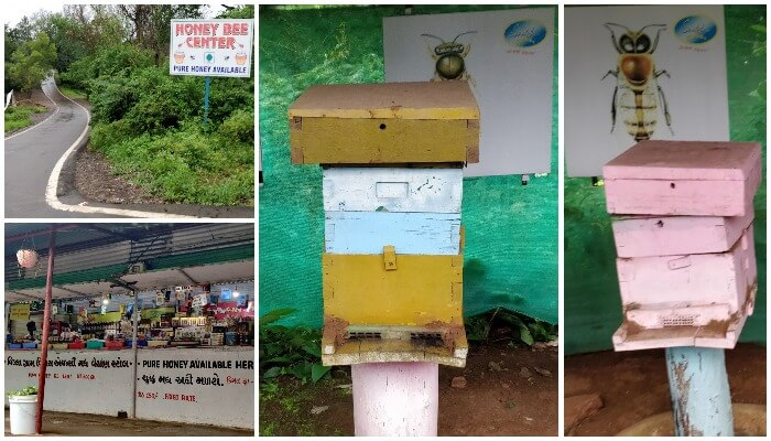 Honey Bee Centre - Places to Visit in Saputara