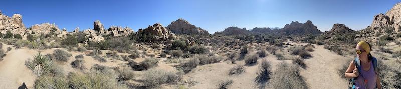 Una vista panoramica del Sentiero Natura della Valle Nascosta nel Parco Nazionale di Joshua Tree