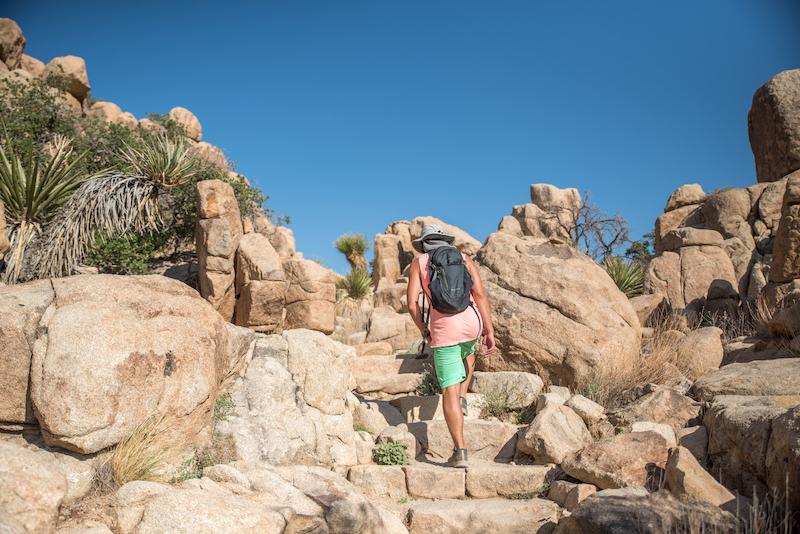 Gradini in pietra lungo il sentiero naturalistico della valle nascosta nel Parco nazionale di Joshua Tree