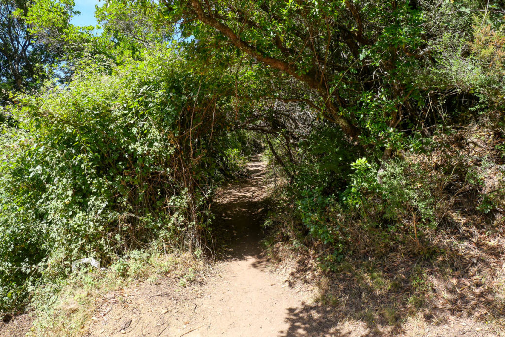 Punto de partida de la ruta de senderismo a las cascadas de Purcaraccia en Córcega