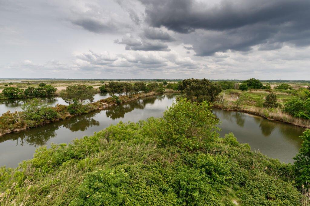 La Reserva de Aves del Teich